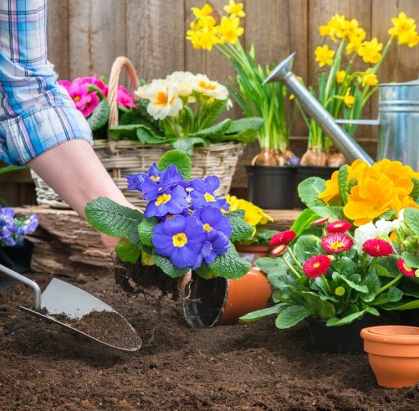 Macetas de exterior consejos de jardiner a kb jardin - Consejos de jardineria ...